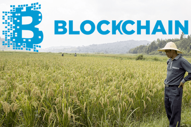 But With Blokchain The Supply System From Farms To Wholesalers Retailers Or Vendors And Finally Consumers Can Become Completely Transparent Easy